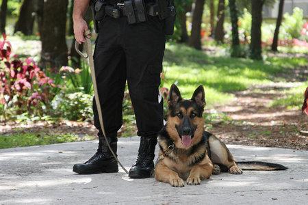 Law-Enforcement Assisted Diversion Programs Are Expanding